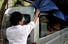 Làm rõ vụ công an và xe công chuyển gỗ trái phép