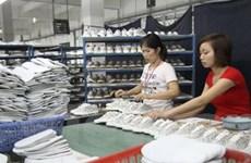 Doanh nghiệp da giày cần phát triển chuỗi cung ứng