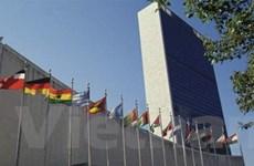 VN sẽ tích cực cải tổ Đại hội đồng Liên hợp quốc