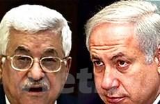 Ai Cập chủ trì cuộc gặp cấp cao Israel-Palestine