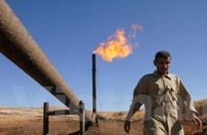 Giá dầu mỏ thế giới tăng mạnh lên gần 125 USD