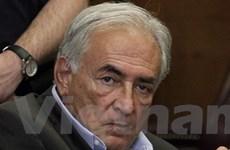 Cựu Tổng Giám đốc IMF sẽ lại bị kiện cưỡng bức