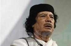 Ông Gaddafi phủ nhận quyết định công nhận NTC