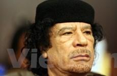 Gaddafi: Không bao giờ bỏ mảnh đất của cha ông