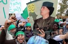 Chính phủ Libya đặt điều kiện để gặp phe nổi dậy