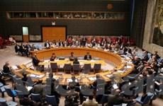 HĐBA LHQ thảo luận đơn xin gia nhập của Palestine