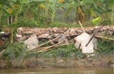 Hải Phòng thực thi kết luận Thủ tướng vụ thu đất