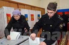Điều tra sai sót bầu cử