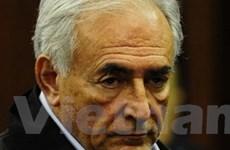 """Strauss-Kahn: Sarkozy chỉ đạo vụ """"cô hầu phòng"""""""