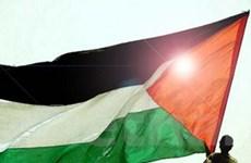 Palestine có thể đồng ý quy chế LHQ phi thành viên