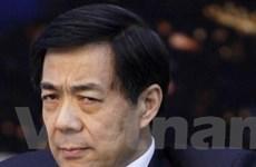 Chính thức mở điều tra hình sự đối với Bạc Hy Lai