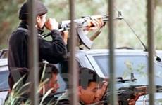 Algeria: 23 con tin chết, 32 kẻ khủng bố bị tiêu diệt