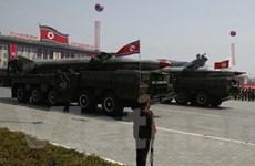 Báo cáo khả năng hạt nhân của Triều Tiên bị coi nhẹ