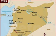 QH và chính quyền Mỹ phản ứng trái chiều về Syria