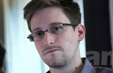 """Đâu là hy vọng tị nạn cho """"người tố giác"""" Snowden?"""