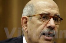 ElBaradei từ chối làm thủ tướng lâm thời của Ai Cập