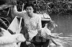 Liên hoan phim quốc tế tôn vinh đạo diễn Hồng Sến
