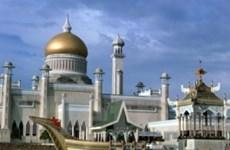 Đến Lễ hội Hari Raya diện kiến Hoàng gia Brunei