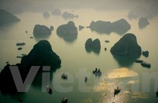 Vịnh Hạ Long lấy lại niềm tin sau sự cố chìm tàu