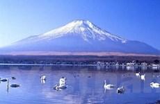 Bay đến Nhật cùng tour giảm giá sâu của Vietravel