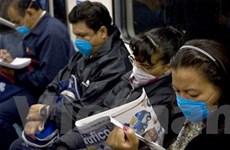 Thế giới có hơn 77.000 ca nhiễm cúm A/H1N1