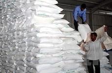Giá gạo trắng có thể lên tới 800 USD mỗi tấn