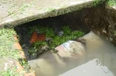 Hơn 400 tỷ đồng xử lý nước thải ở Mỹ Tho