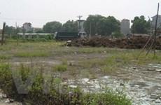 Tây Ninh thu 3.000ha đất sử dụng không hiệu quả