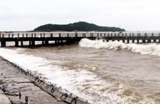 PTSC quản lý cảng Hòn La ở Quảng Bình