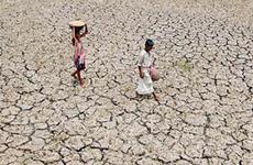 Ấn Độ đối mặt với nạn hạn hán nghiêm trọng