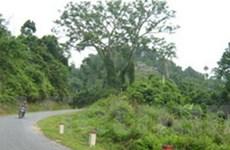 1.100 tỷ đồng nâng cấp quốc lộ 2C Tuyên Quang