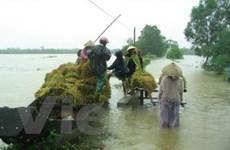 Mưa, lốc miền Trung: 1 người chết, thiệt hại nặng