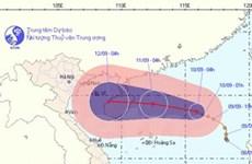 Dự báo bão số 7 có khả năng sẽ mạnh thêm
