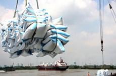 Việt Nam sẽ xuất khẩu 6 triệu tấn thóc gạo