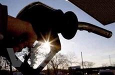 Giá dầu giảm mạnh trước thềm cuộc họp của FED