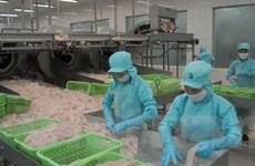 Quyết định của EC gây khó cho xuất khẩu thủy sản
