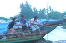 Tàu thuyền lén lút rời nơi tránh trú để bán hải sản