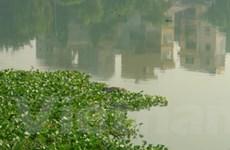 Phát hiện xác một nam thanh niên tại hồ Ba Mẫu