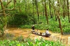 Du lịch sinh thái kết hợp với dịch vụ nông thôn