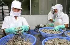 Nỗ lực của doanh nghiệp giúp xuất khẩu phục hồi