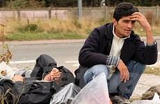 Người di cư trên thế giới ngày càng khốn khó