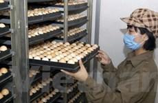 Xử lý việc đưa tin sai về công nghệ tẩy trứng gà