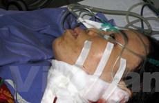 Truy bắt đối tượng giết người tại tỉnh Quảng Ninh