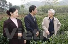 Thái Nguyên cần coi trọng phát triển bền vững