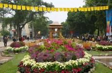 Khai mạc lễ hội hoa Hà Nội: Lung linh, rộn ràng