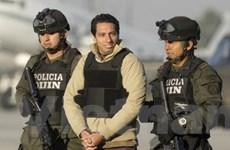 """""""Madoff của Colombia"""" bị dẫn độ sang Mỹ xét xử"""