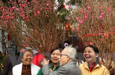 Chợ hoa Tết - sắc thái văn hóa của thủ đô Hà Nội