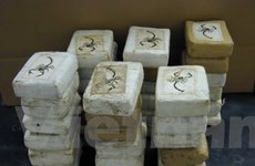 Paraguay thu lượng cocaine lớn thứ 2 trong lịch sử
