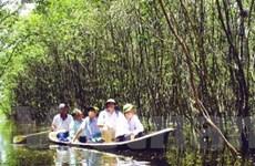 Các tour du lịch miệt vườn ở Nam bộ hút khách
