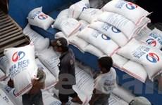 Giá lúa gạo không giảm mạnh trong thời gian tới